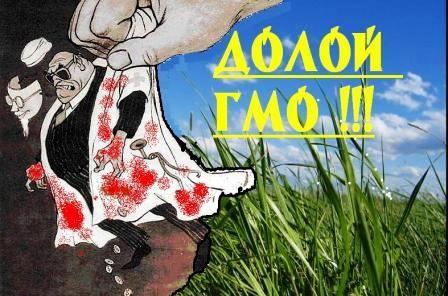 Россию засеют ГМО!